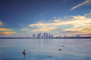 tampa bay skyline by Dana Nicole Photography
