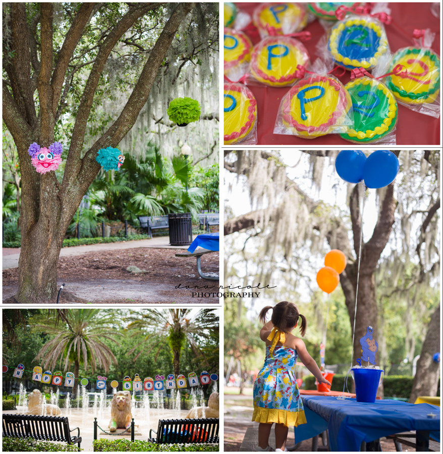 Tampa Party Photographer | Dana Nicole Photography