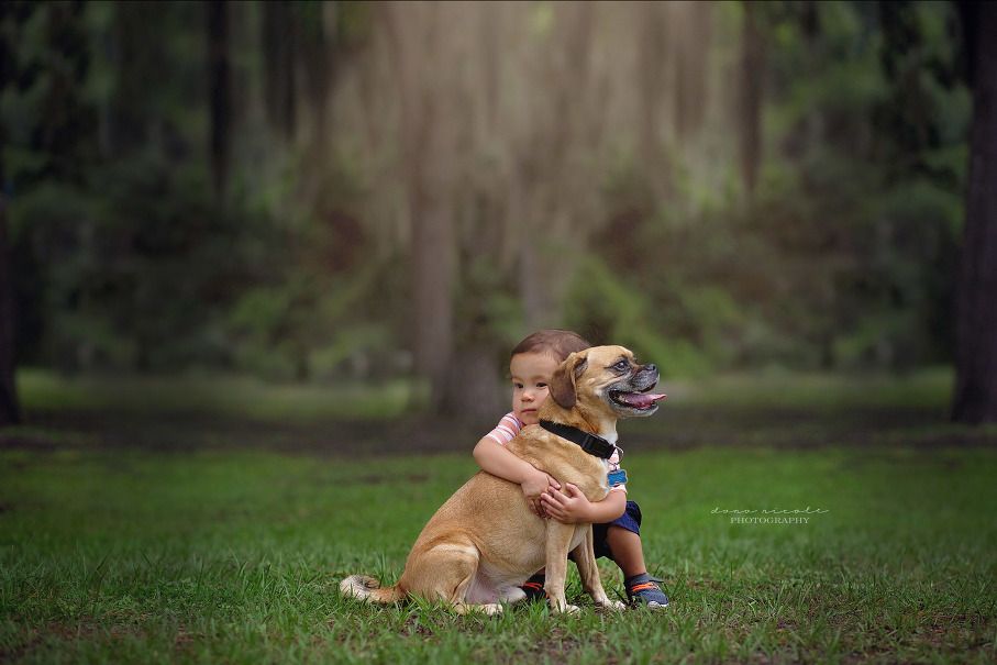 Tampa Pet Photography | Dana Nicole Photography