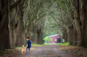 Child Photo Session at Tree Lined Road | Dana Nicole Photography | Tampa, FL