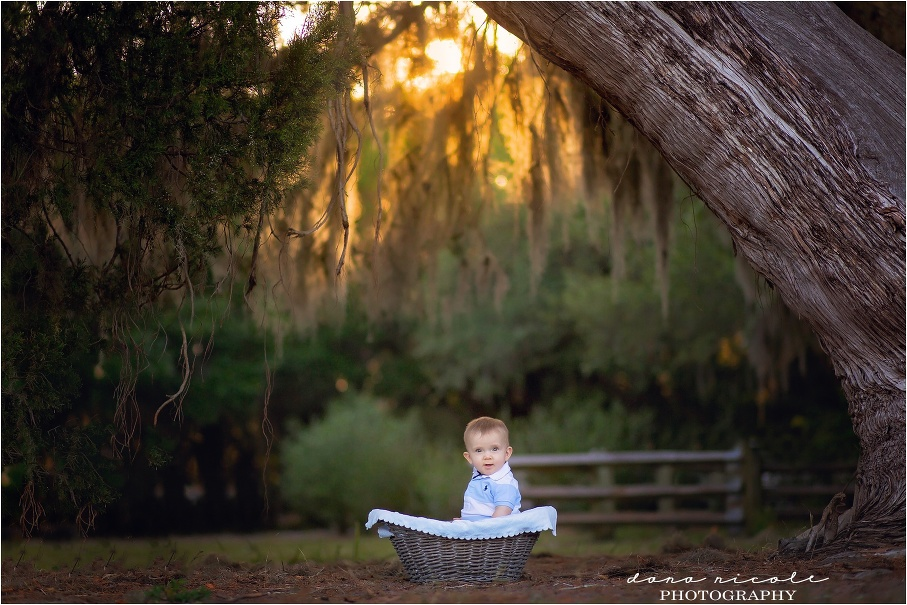 Tampa Child Photographer | Philippe Park in Safety Harbor | Dana Nicole Photography